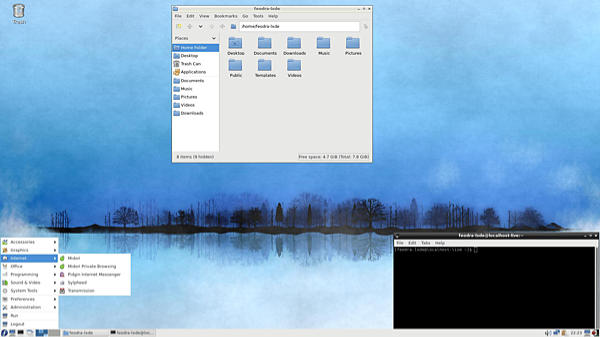 Screen shot of the L X D E desktop running on Fedora Linux